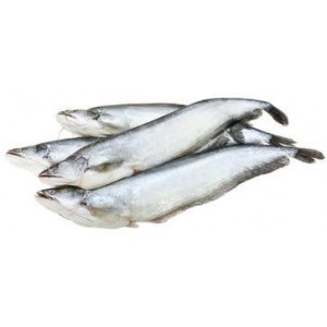 Boal Fish (2 to 2.5 kg each)* $11.00/Kg